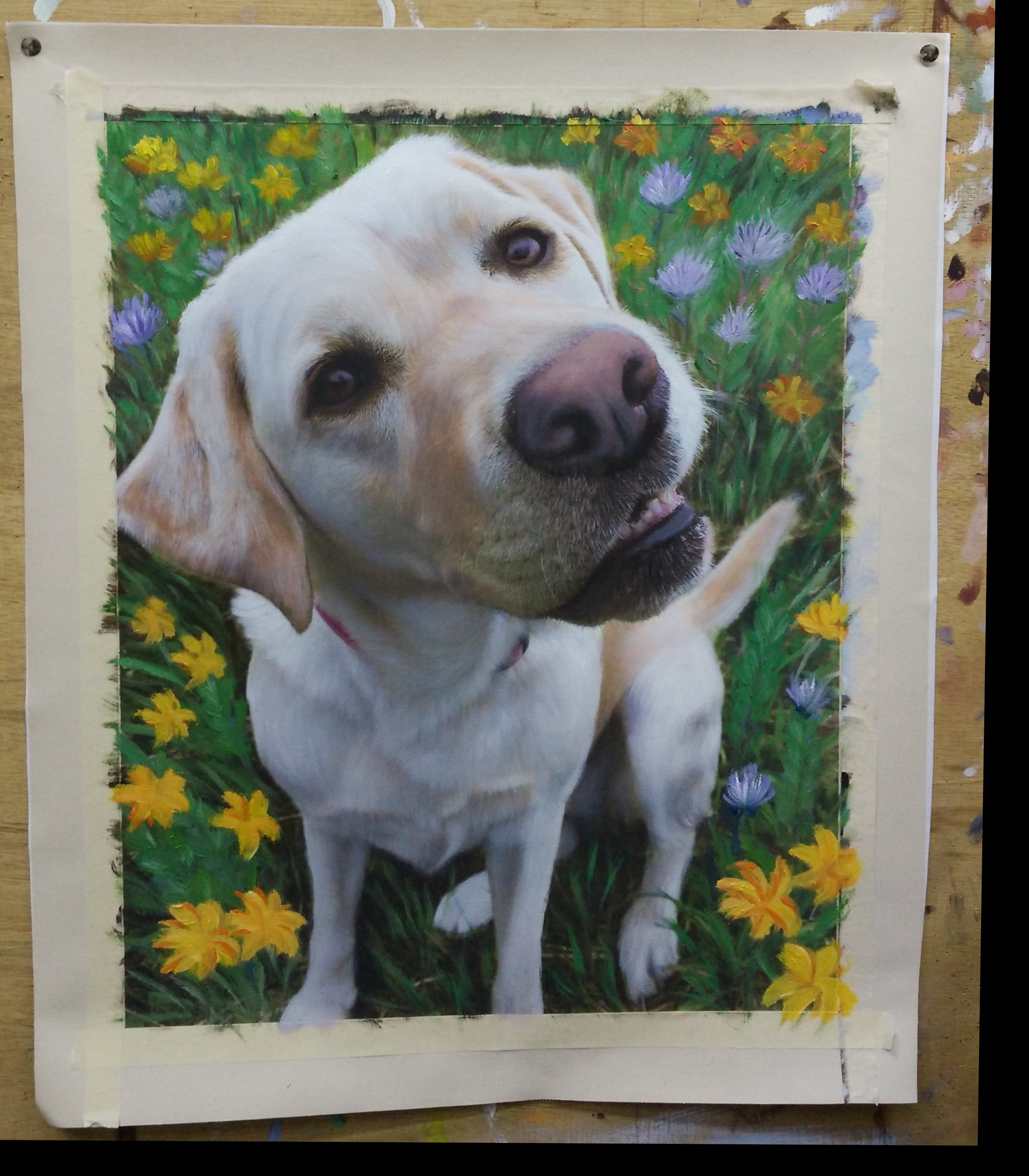 Painted photo of a yellow labrador retriever sitting in a field of flowers