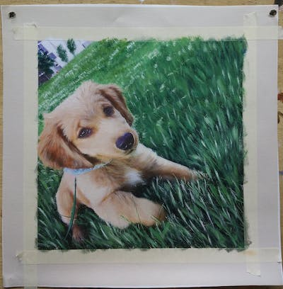 A painting of dog, dog breed, dog like mammal, golden retriever, grass, puppy, snout, dog breed group, retriever, lawn