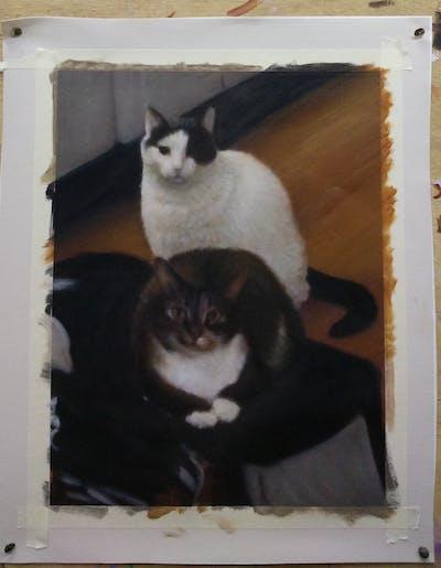 A painting of cat, mammal, small to medium sized cats, vertebrate, floor, flooring, cat like mammal, hardwood, carnivoran, kitten