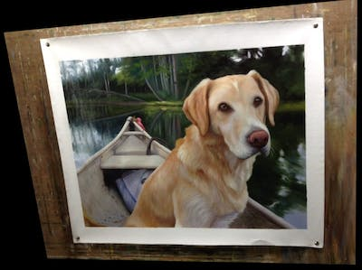A painting of dog, dog like mammal, dog breed, retriever, labrador retriever, golden retriever, snout, dog breed group, sporting group, companion dog