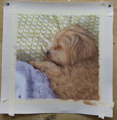 A painting of dog breed, dog like mammal, dog, dog crossbreeds, cockapoo, snout, schnoodle, cavapoo, carnivoran, puppy