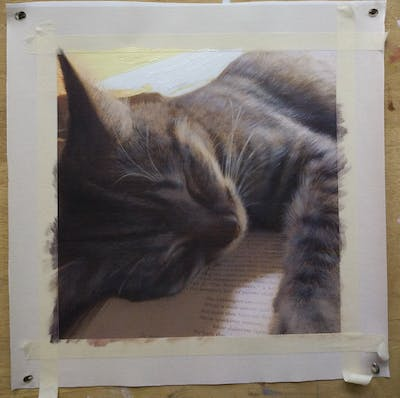 A painting of cat, whiskers, mammal, small to medium sized cats, fauna, cat like mammal, fur, snout, photo caption, paw