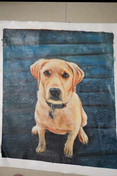 A painting of dog, dog breed, dog like mammal, snout, labrador retriever, retriever, companion dog, carnivoran, sporting group, golden retriever