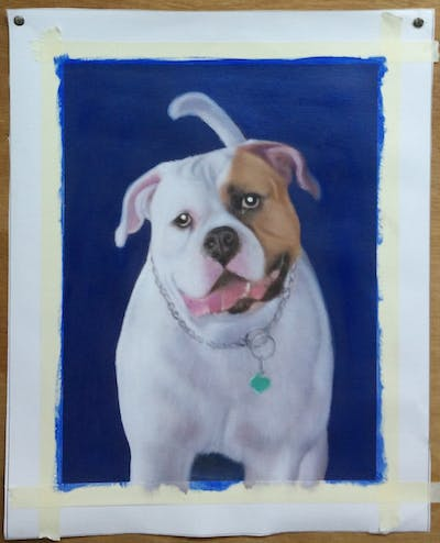 A painting of dog like mammal, dog, dog breed, old english bulldog, olde english bulldogge, american bulldog, dog breed group, toy bulldog, bulldog, australian bulldog