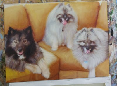 A painting of dog, dog like mammal, german spitz, dog breed, mammal, german spitz klein, dog breed group, german spitz mittel, pomeranian, volpino italiano