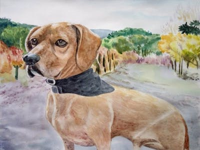 A painting of dog breed, dog, dog like mammal, snout, hunting dog, dog crossbreeds, hound, harrier, vizsla, broholmer