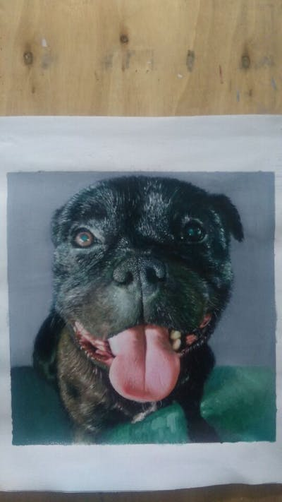 A painting of dog, dog like mammal, dog breed, pug, nose, snout, whiskers, carnivoran