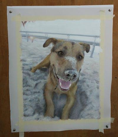 A painting of dog, dog breed, street dog, dog like mammal, snout, dog breed group, potcake dog, dog crossbreeds