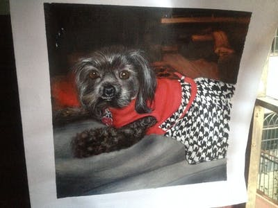 A painting of dog, dog like mammal, dog breed, puppy, snout, dog crossbreeds, schnoodle, companion dog, cockapoo, whiskers