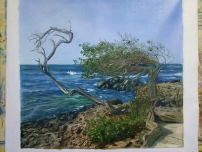 A painting of tree, woody plant, nature reserve, shore, coast, plant, driftwood, sky, wood, sea