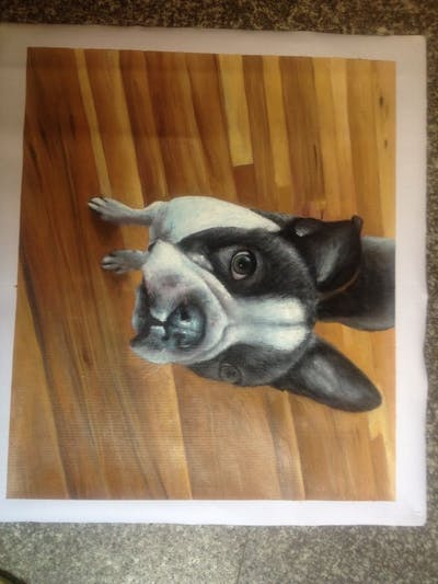 A painting of dog, dog like mammal, dog breed, boston terrier, snout, toy bulldog, french bulldog, carnivoran, dog breed group, companion dog