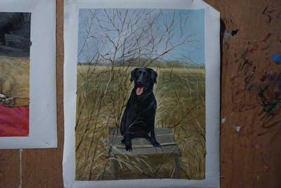 A painting of dog, labrador retriever, dog like mammal, dog breed, retriever, grass, borador, hunting dog, snout, sporting group