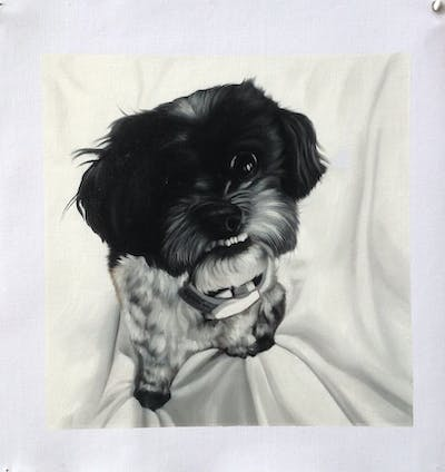 A painting of dog, dog like mammal, dog breed, black and white, puppy, monochrome photography, schnoodle, snout, morkie, havanese
