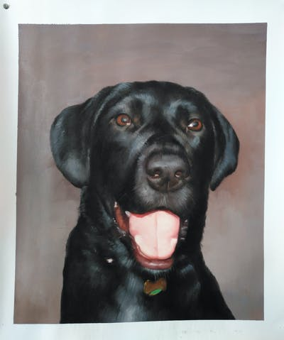 A painting of dog, dog like mammal, dog breed, labrador retriever, borador, retriever, dog breed group, snout, flat coated retriever, dog crossbreeds