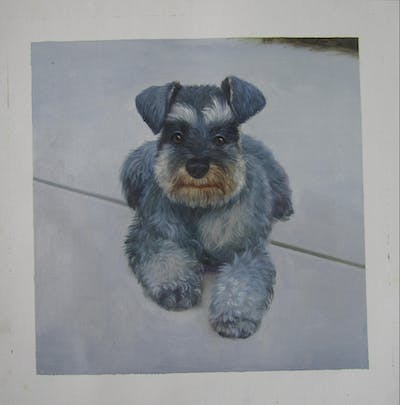 A painting of dog, dog like mammal, miniature schnauzer, dog breed, schnauzer, cesky terrier, standard schnauzer, snout, terrier, carnivoran