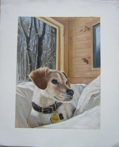 A painting of dog, dog breed, dog like mammal, snout, dog breed group, home, companion dog, window