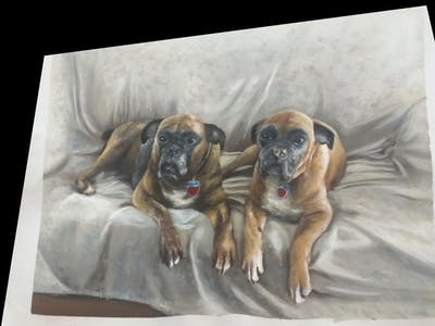 A painting of dog, dog breed, boxer, dog like mammal, dog breed group, snout, carnivoran, bullmastiff, dog crossbreeds