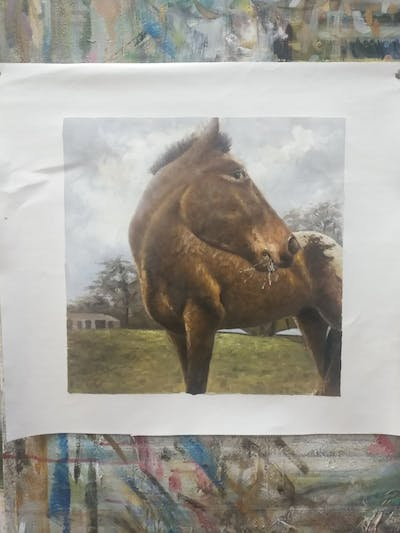 A painting of horse, bridle, halter, mane, horse tack, rein, horse like mammal, stallion, mare, mustang horse