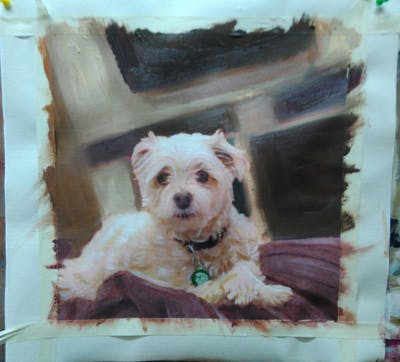 A painting of dog breed, maltese, dog, dog breed group, dog like mammal, bichon, snout, schnoodle, west highland white terrier, dog crossbreeds