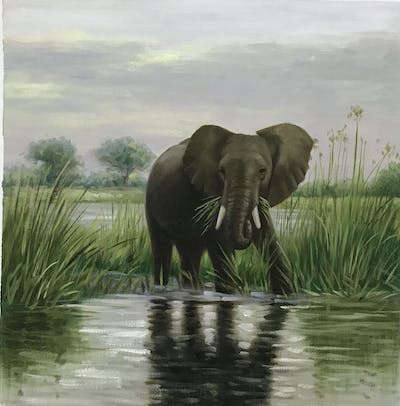 A painting of elephants and mammoths, elephant, wildlife, indian elephant, terrestrial animal, nature reserve, african elephant, tusk, safari, fauna