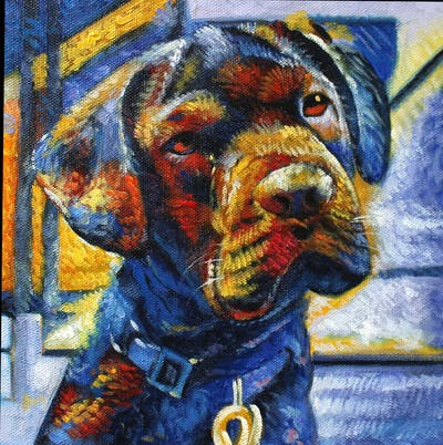 A painting of dog, dog breed, dog like mammal, cane corso, snout, guard dog, rare breed dog, labrador retriever, sporting group