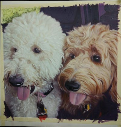 A painting of dog breed, dog, goldendoodle, dog like mammal, dog crossbreeds, snout, cockapoo, poodle crossbreed, dog breed group, schnoodle