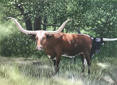 A painting of horn, cattle like mammal, texas longhorn, fauna, wildlife, cow goat family, rural area, livestock, pasture, ox