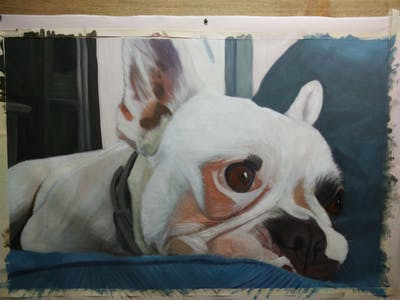 A painting of dog, dog like mammal, dog breed, mammal, vertebrate, nose, french bulldog, dog breed group, snout, toy bulldog