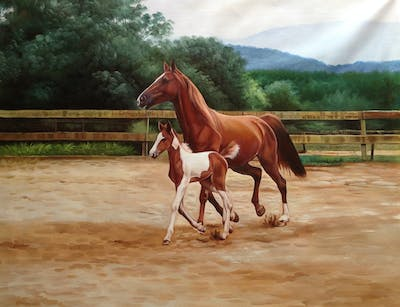 A painting of horse, mare, stallion, mane, horse like mammal, halter, rein, bridle, mustang horse, colt