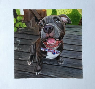 A painting of dog, dog breed, dog like mammal, american pit bull terrier, snout, dog breed group, pit bull, carnivoran, american staffordshire terrier, staffordshire bull terrier