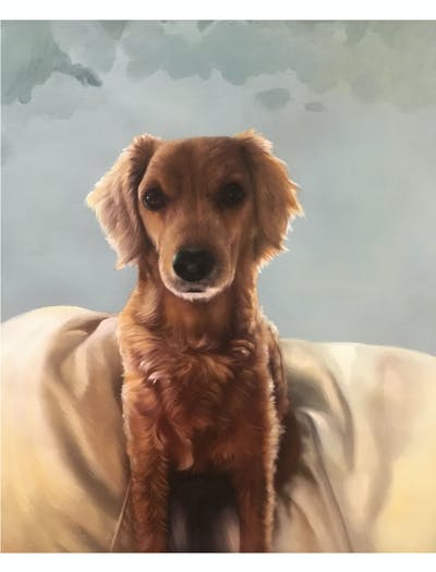 A painting of dog, dog breed, dog like mammal, snout, fur, dog crossbreeds, puppy, companion dog, golden retriever, carnivoran