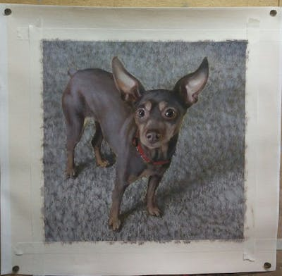 A painting of dog, dog breed, dog like mammal, pražský krysařík, pinscher, dog breed group, english toy terrier, miniature pinscher, snout, russkiy toy