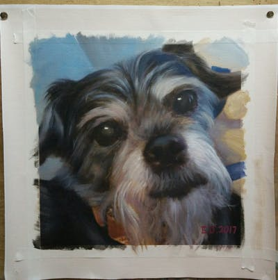 A painting of dog, dog breed, dog like mammal, snout, terrier, schnoodle, miniature schnauzer, cairn terrier, dog crossbreeds, morkie