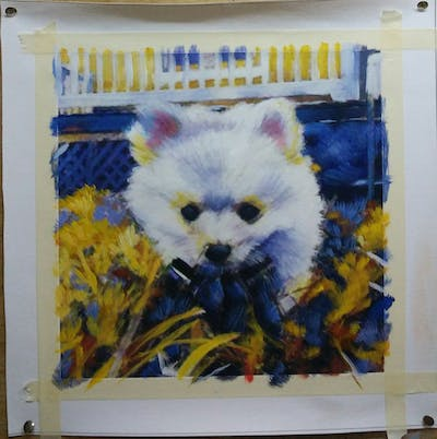 A painting of dog, dog like mammal, pomeranian, dog breed, mammal, dog breed group, german spitz klein, vertebrate, german spitz, volpino italiano