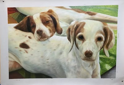 A painting of dog breed, dog, brittany, dog like mammal, hunting dog, snout, companion dog, spaniel, carnivoran, sporting group