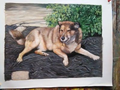 A painting of dog, dog breed, dog breed group, dog like mammal, street dog, snout, kunming wolfdog, wolfdog, east siberian laika, carnivoran