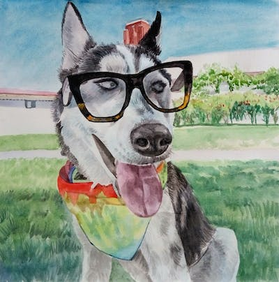 A painting of dog, dog like mammal, siberian husky, dog breed, snout, dog breed group, glasses, sunglasses, sled dog, vision care