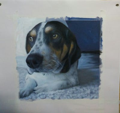 A painting of dog, dog breed, dog like mammal, beagle, dog breed group, treeing walker coonhound, finnish hound, estonian hound, snout, hound