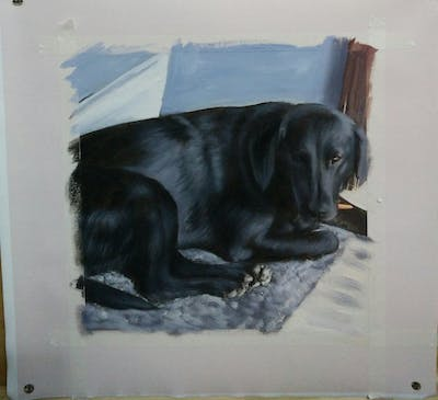 A painting of dog, black, dog breed, labrador retriever, dog like mammal, borador, snout, retriever, dog breed group, sporting group