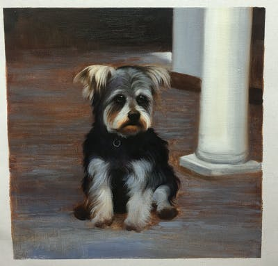 A painting of dog, dog like mammal, dog breed, vertebrate, miniature schnauzer, terrier, puppy, morkie, carnivoran, snout