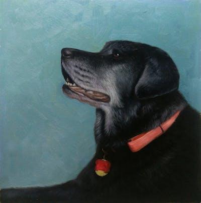 A painting of dog, black, dog like mammal, labrador retriever, dog breed, snout, borador, retriever, flat coated retriever, sporting group