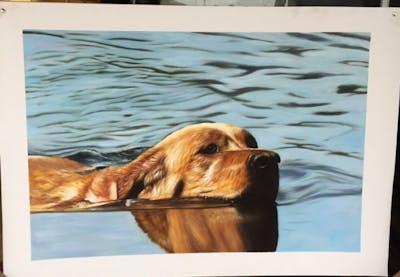 A painting of dog, dog like mammal, dog breed, golden retriever, retriever, dog breed group, snout, nova scotia duck tolling retriever, english cocker spaniel, carnivoran