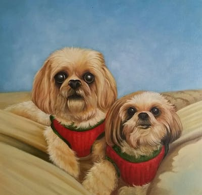 A painting of dog, dog like mammal, dog breed, mammal, vertebrate, dog breed group, shih tzu, carnivoran, chinese imperial dog, snout