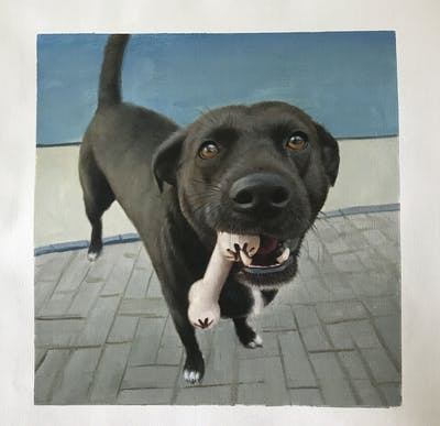A painting of dog, dog breed, snout, street dog, dog breed group, patterdale terrier, dog crossbreeds, dog like mammal, whiskers, sporting group