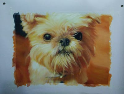 A painting of dog, dog breed, dog like mammal, snout, carnivoran, dog breed group, terrier, puppy, companion dog, morkie