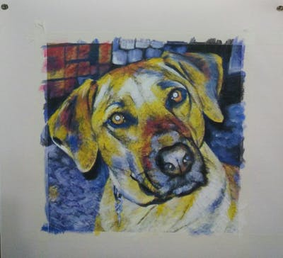 A painting of dog, dog breed, rhodesian ridgeback, dog like mammal, snout, black mouth cur, broholmer, dog crossbreeds, tosa, treeing tennessee brindle