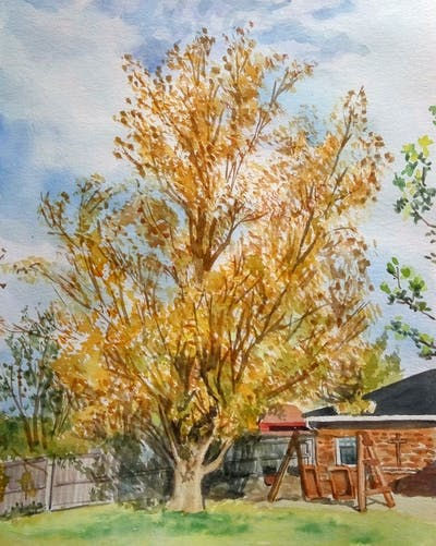 A painting of tree, plant, spring, branch, autumn, sky