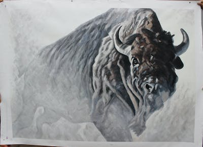 A painting of cattle like mammal, head, wildlife, freezing, horn, snow, snout, bison, sculpture