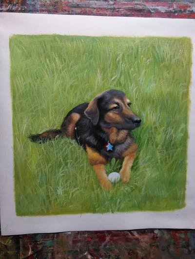 A painting of dog, dog breed, dog like mammal, grass, dog breed group, huntaway, hound, hunting dog, carnivoran