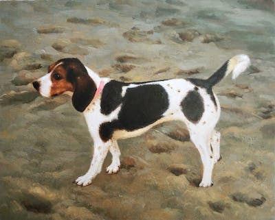 A painting of dog, dog breed, dog like mammal, harrier, beagle, treeing walker coonhound, english foxhound, american foxhound, estonian hound, hound